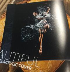 10x10 Luminous or Premier Acrylic Album